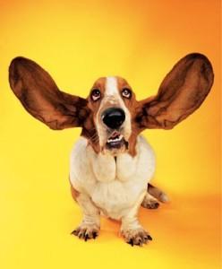 ListeningSkill